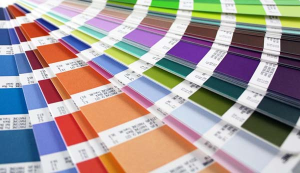 Color Swatch for Repainting Your Living Room